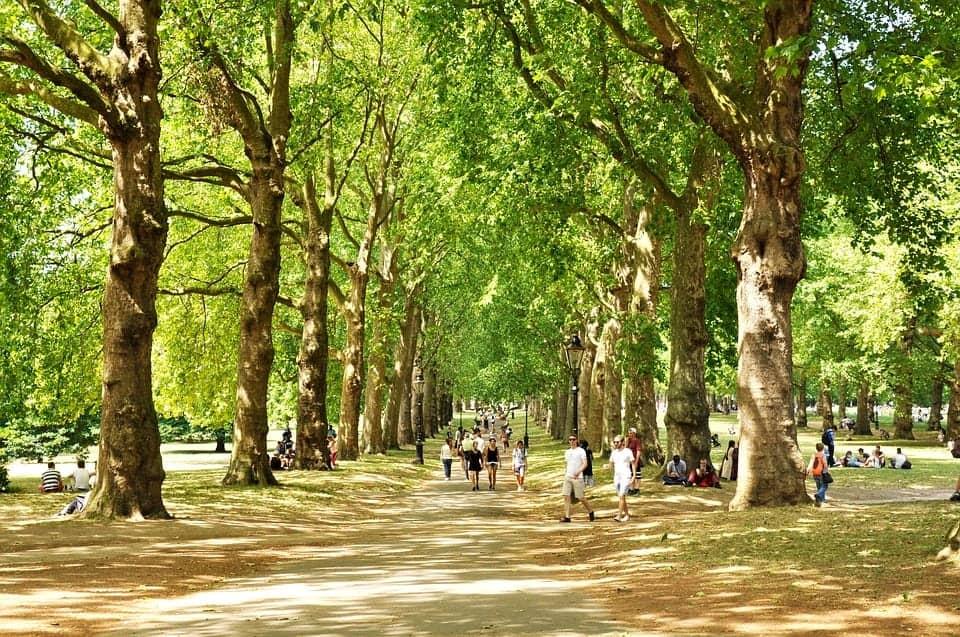 imagen ciudades más 'pet friendly' de Europa Londres 1