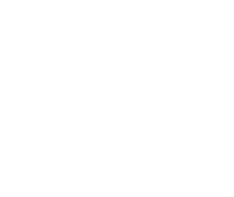 intriper logo especial puerto vallarta