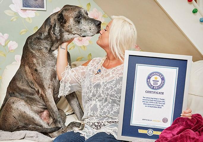Falleció Freddy, el perro más alto del mundo
