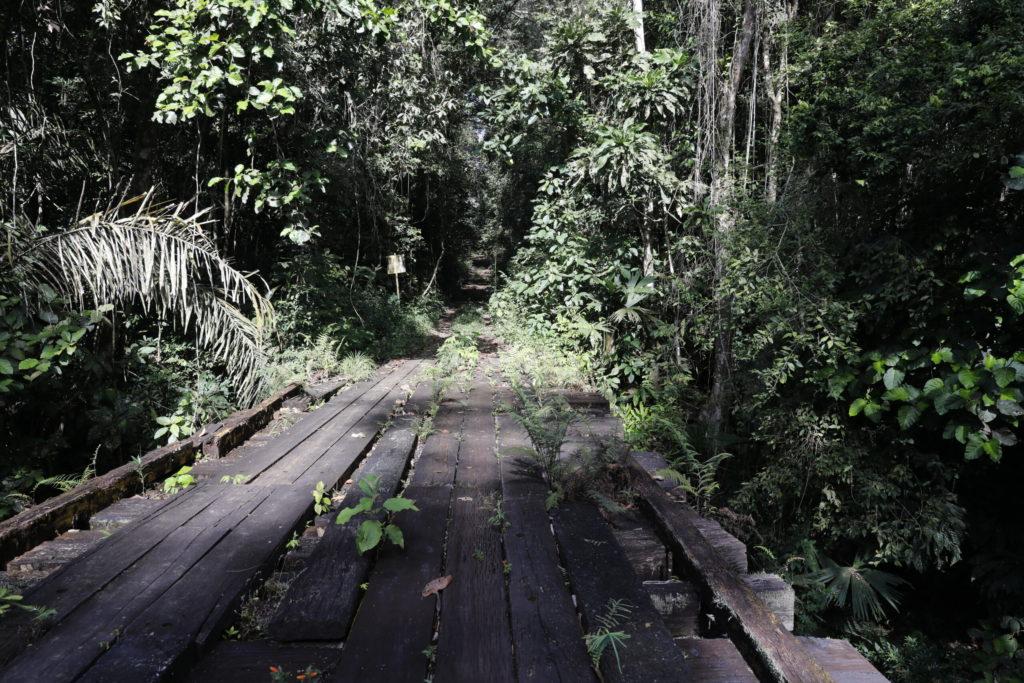 "Panamá lanzó ""1.000 kilómetros de Senderos"", un proyecto de turismo verde para reactivar la economía"