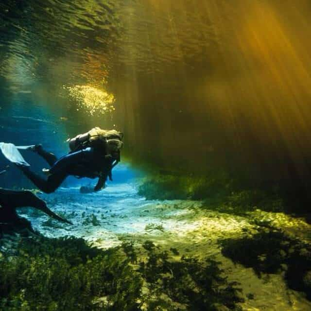 Ginnie Springs 15129121787 8cbea4c8e2 o 1
