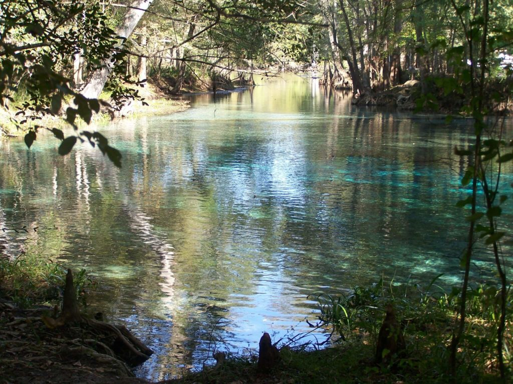 Ginnie Springs 1925206693 cfa80c0d69 k 1