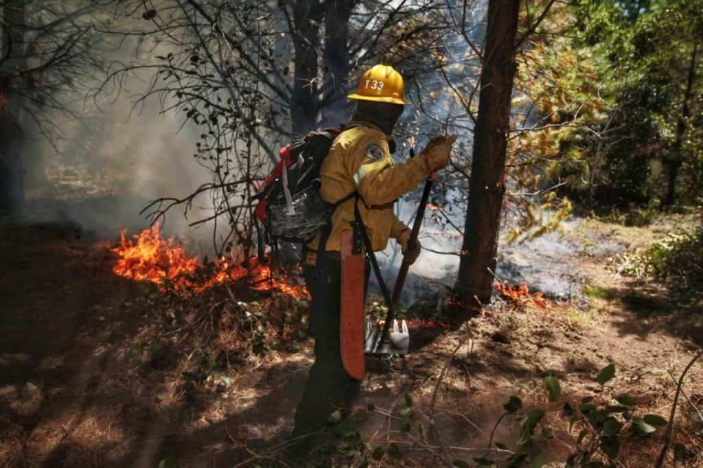 imagen incendio incendio el bolson 4