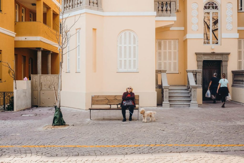 ciudades para visitar con tu mascota cristina gottardi A8jwotHfXWY unsplash 1