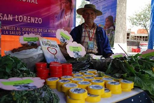 Médicos tradicionales de Bolivia son capacitados en el uso de plantas medicinales contra el COVID-19