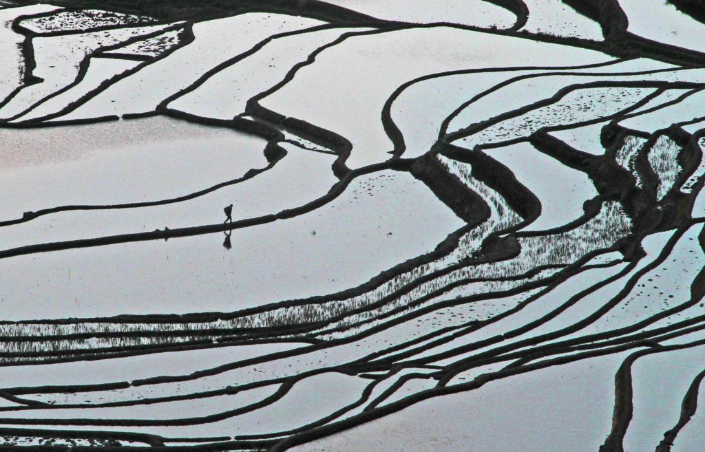 terrazas de arroz de Yuanyang 5536524157 65f32affcd k 1