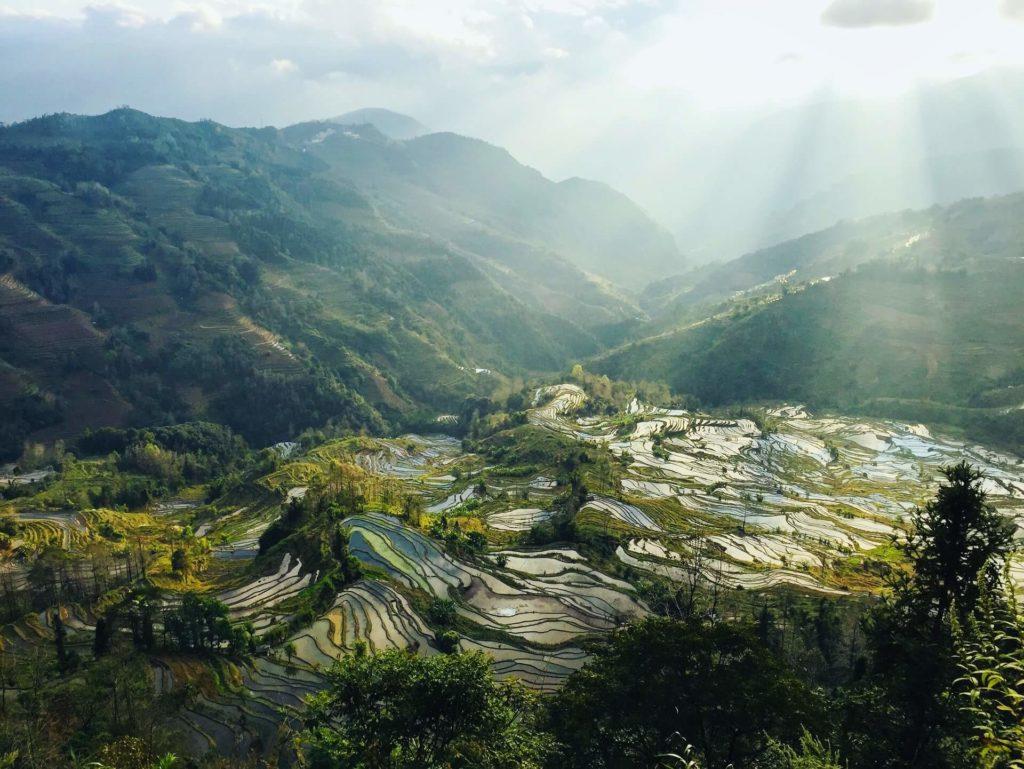terrazas de arroz de Yuanyang anna coco eHBL70GPj34 unsplash 1