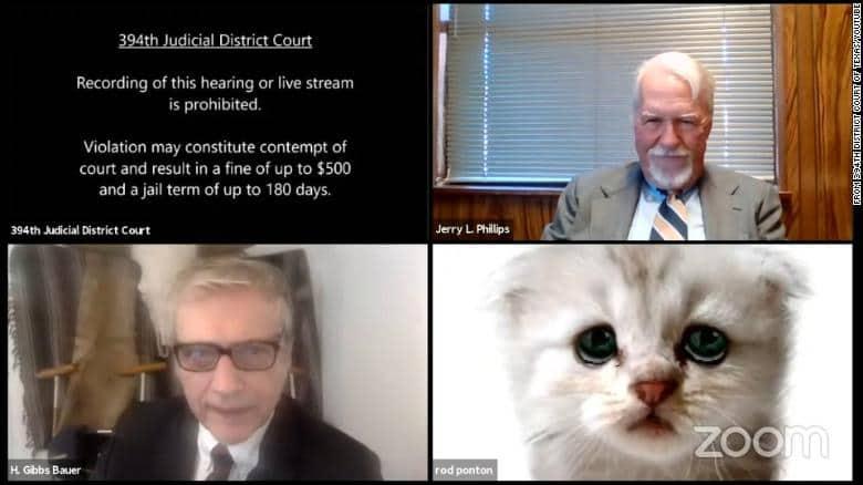 """Un fiscal de Texas ingresó a una audiencia judicial por videollamada pero accidentalmente tenía un filtro y aclaró """"Estoy aquí, no soy un gato"""""""