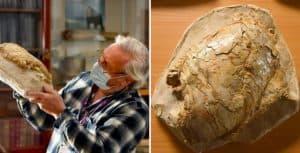 Casi por accidente descubrieron un fósil que pertenecía a un pez de hace 66 millones de años