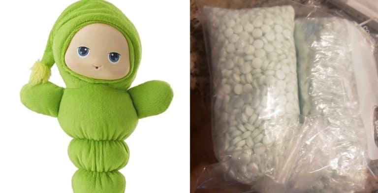 Una familia encontró unas 5.000 pastillas en un peluche que compraron para su hija