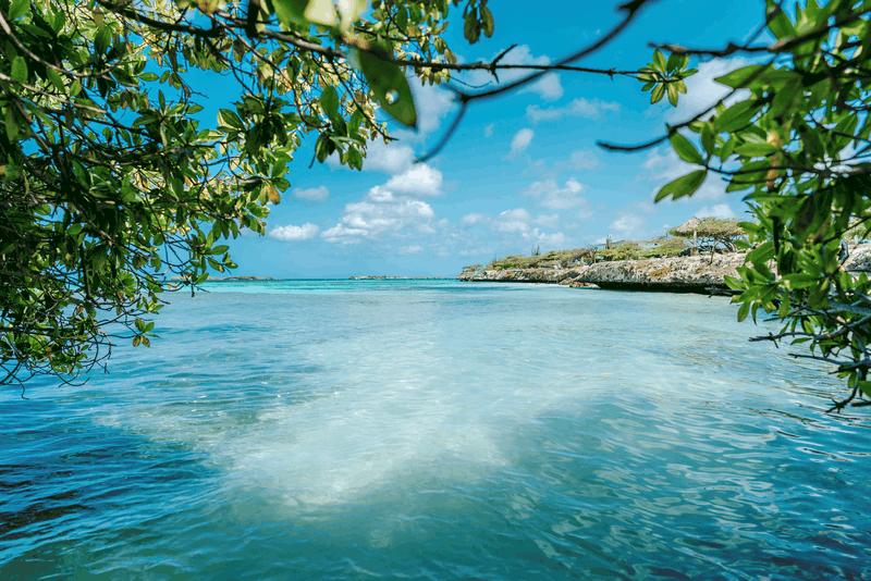 imagen mejores playas de Aruba para conocer webimage 36C8B369 A31F 41F2 A367B8642BA7869E