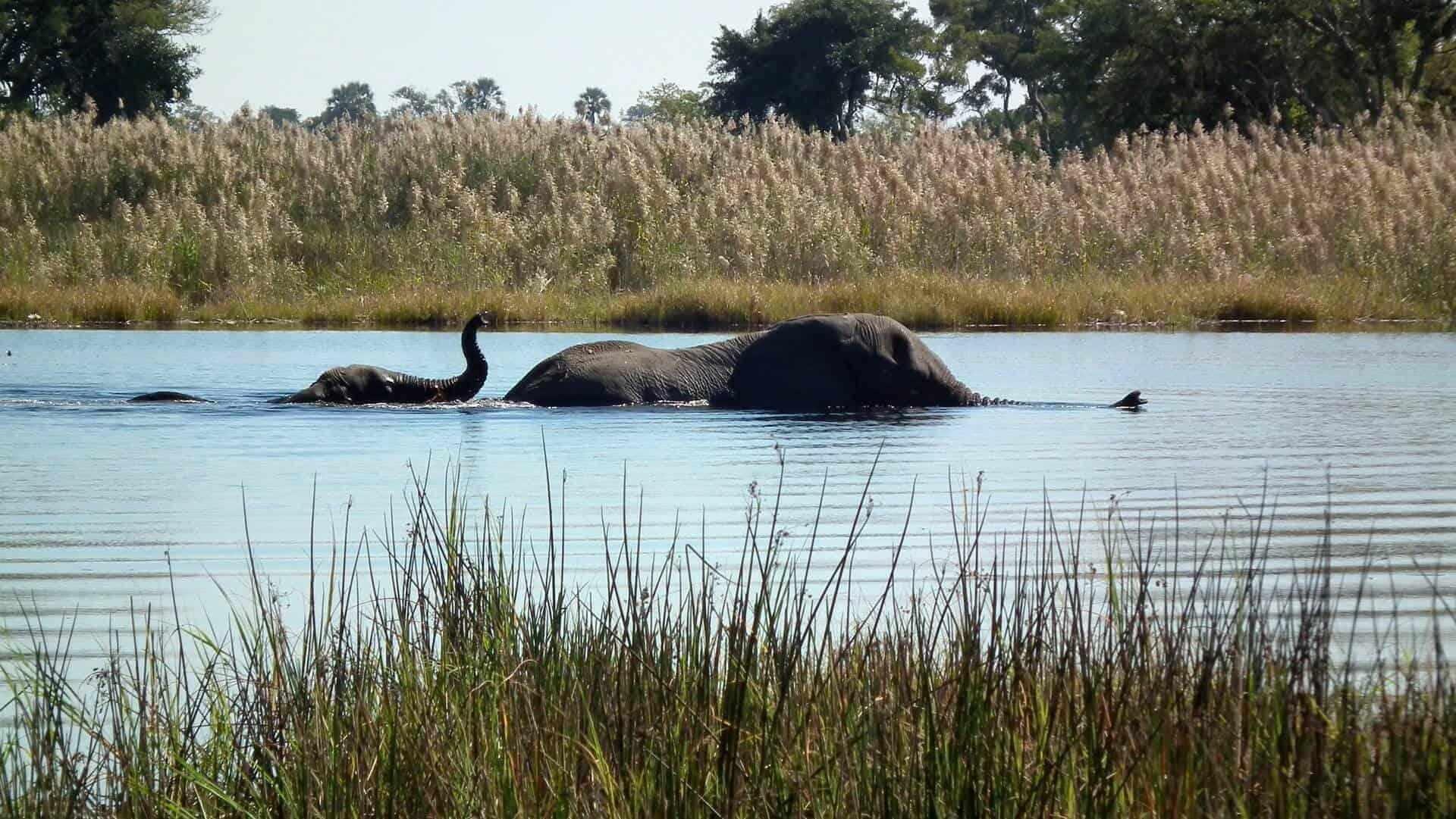 lugares para visitar en Botwana