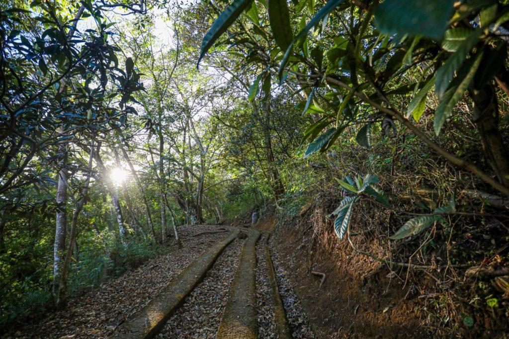 Costa Rica Anuncia La Creación De Parques Naturales Urbanos En Las Ciudades Para Preservar El Ecosistema De Áreas Naturales