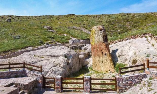 Este Árbol Petrificado Está En Grecia, Tiene 20 Millones De Años Y Se Encuentra Intacto
