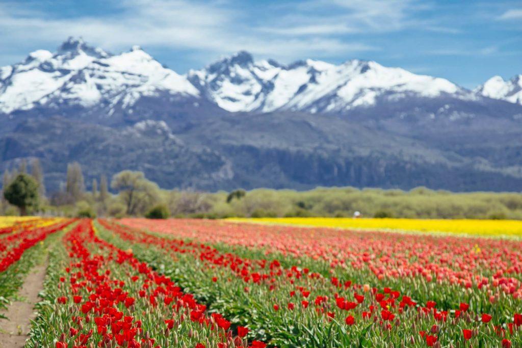 destinos argentinos para visitar marcela rogante 3av5a8f98jY unsplash 1