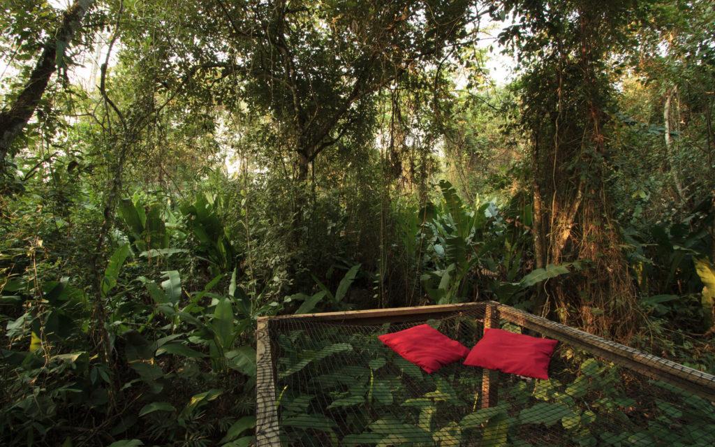 Estamos buscando 2 viajeros que quieran pasar 4 noches en un eco-hotel en la Serranía de La Macarena, Colombia