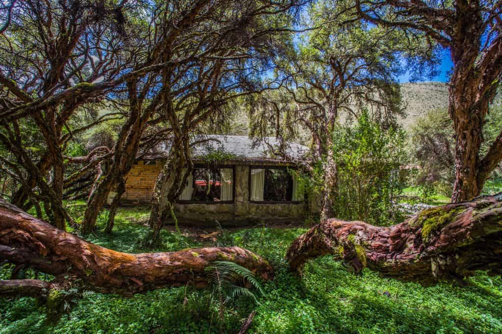 Imagen Polylepis Lodge 36