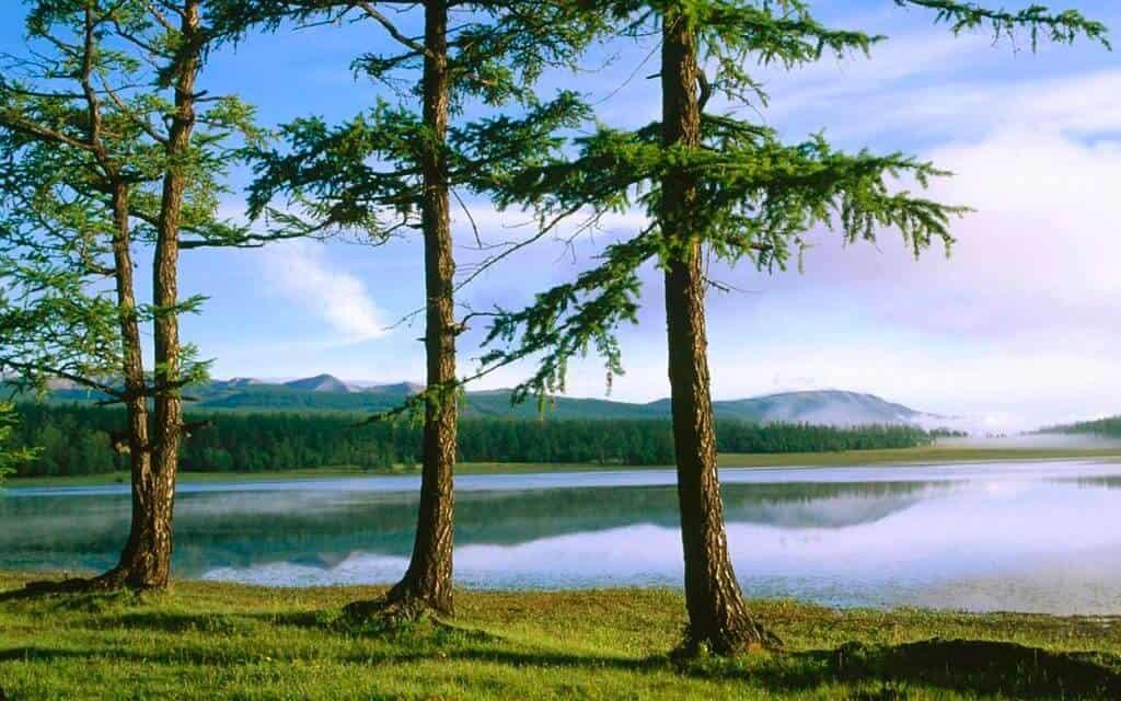 sitios de Mongolia 5639490131 37f65fdf66 b 1