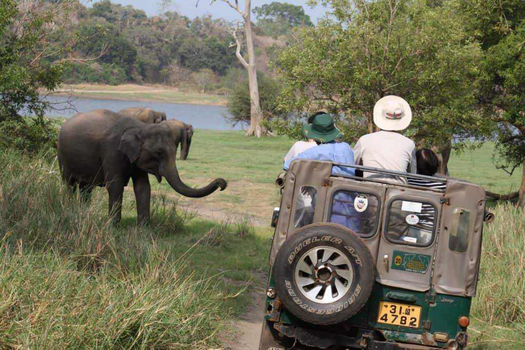 mejores destinos de Asia para viajar con niños 7568185996 5152feba3c k 1 1024x683 1
