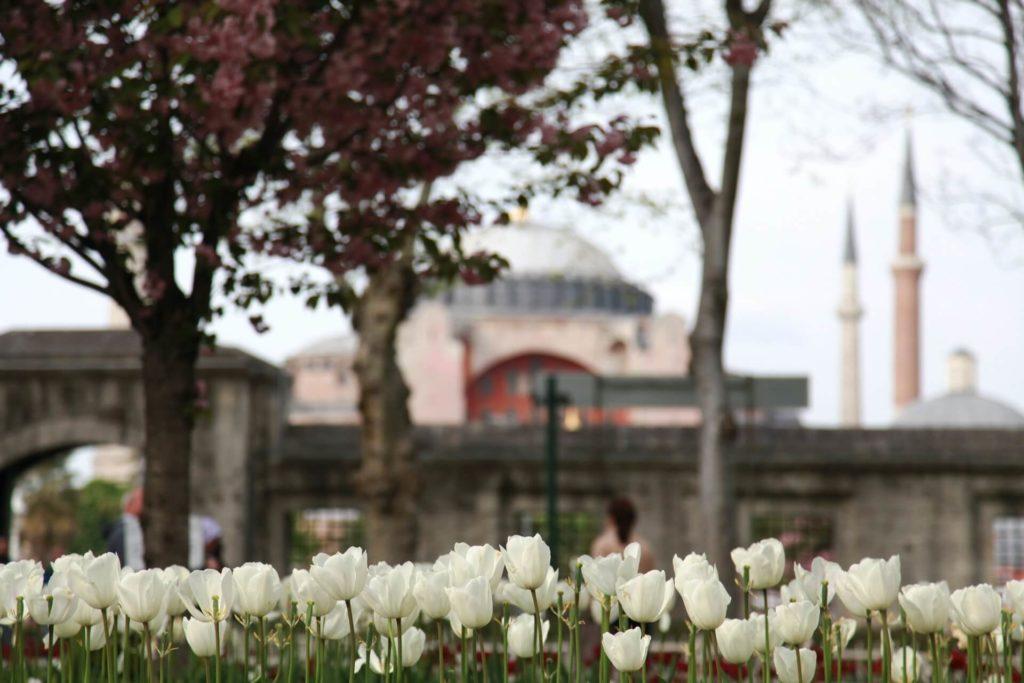 Imagen Mezquitas Alrededor Del Mundo Para Visitar Emre Ergen Cr0Zkieqkdw Unsplash 1