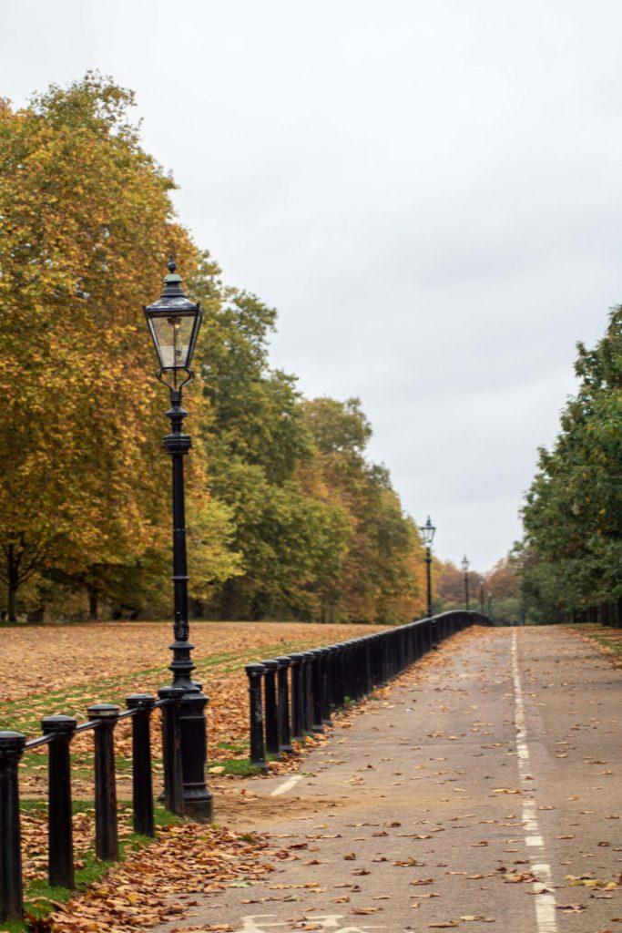 que hacer en el Hyde Park paul schellekens CQQPfgqQc20 unsplash 1