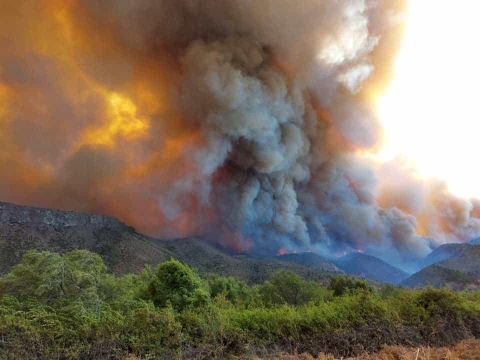 Imagen Incendios Forestales En Río Negro Incendio Sur 1 1