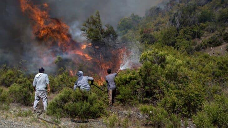 Desesperación En La Patagonia Argentina Por Nuevos Incendios Forestales En Río Negro Y Chubut: Ya Registran Más De 40 Mil Hectáreas Afectadas En Todo El País En Lo Que Va Del 2021