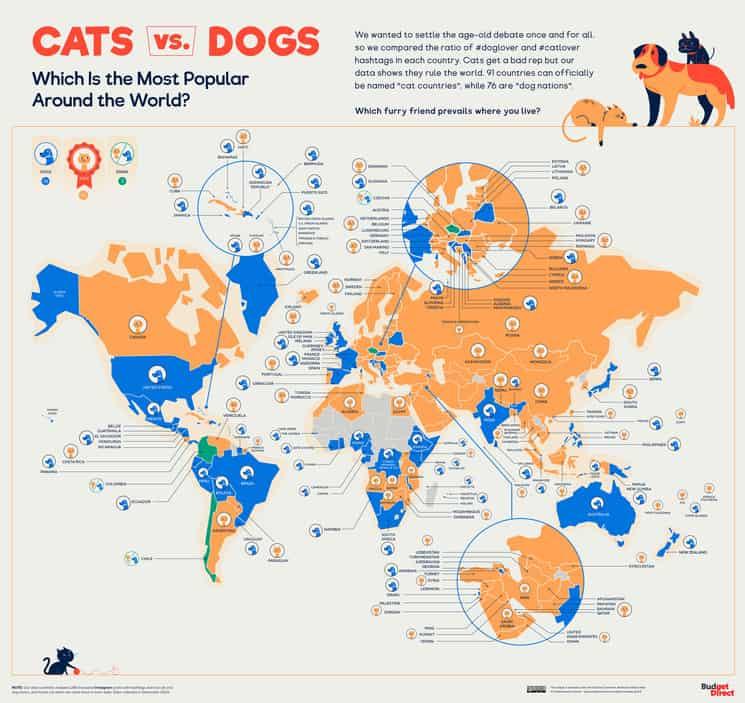 Duelo De Perros Y Gatos: Este Mapa Permite Descubrir Qué Tipo De Mascota Prefieren En Diferentes Países Del Mundo