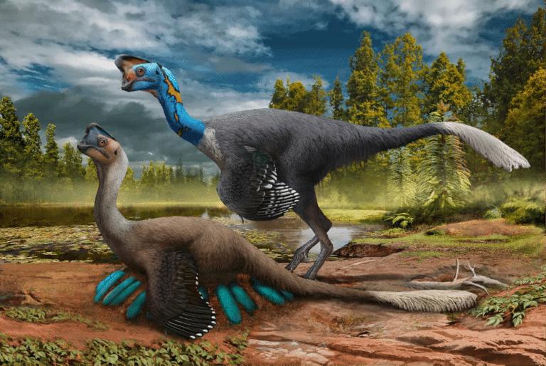 Científicos descubrieron el primer dinosaurio que se ha preservado sentado sobre su nido con embriones fosilizados