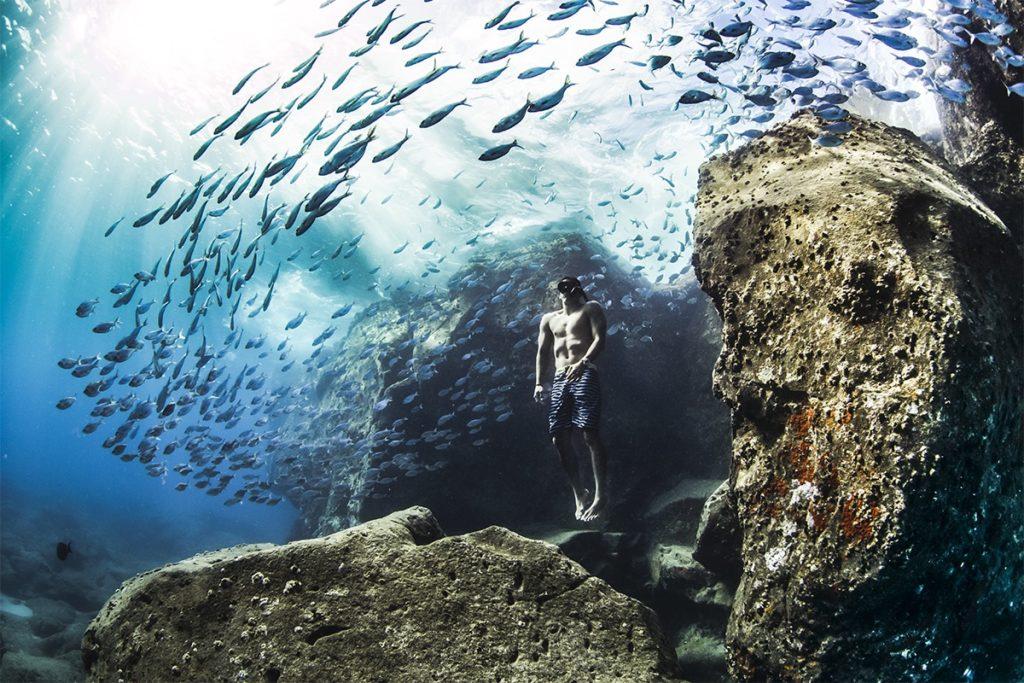 Imagen World Nature Photography Awards 2020 Estas Son Las Fotos Ganadoras De Los World Nature Photography Awards 2020 Un Ano Donde La Naturaleza Encontro Su Maximo Esplendor 3