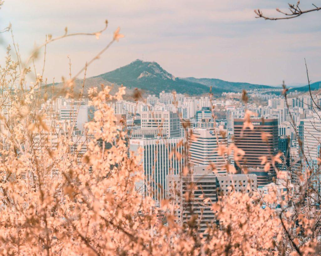 lugares que visitar en Corea del Sur cait ellis V1PwekZF9hA unsplash 1