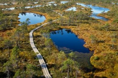 Este nuevo sendero de 1.330 millas unirá los bosques y los parques nacionales de Lituania, Estonia y Letonia, permitiendo explorar a pie la región del Báltico 2