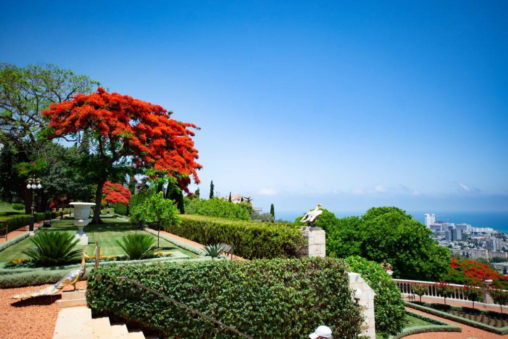 Jardines de Bahaí david holifield ocHqTdBNxEU unsplash 1