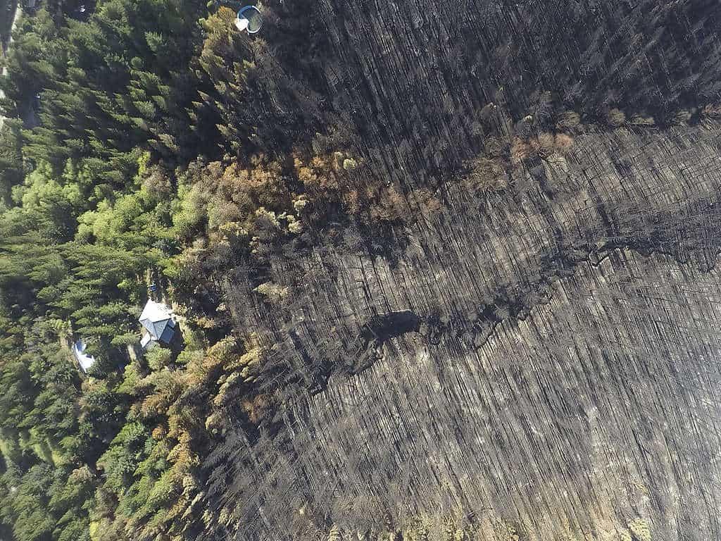 Incendios En La Patagonia Argentina: Difunden Impactantes Imágenes De Las Áreas Más Afectadas El Fuego