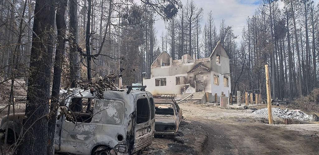 Imagen Incendios En La Patagonia Argentina Incendios En La Patagonia Argentina 7