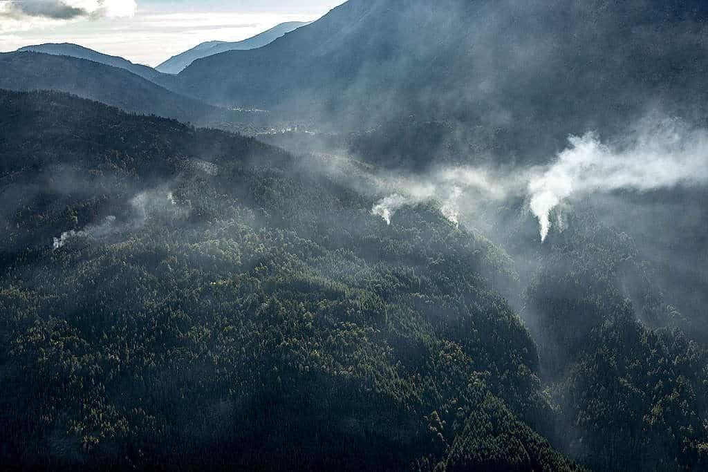 Imagen Incendios En La Patagonia Argentina Incendios En La Patagonia Argentina 8