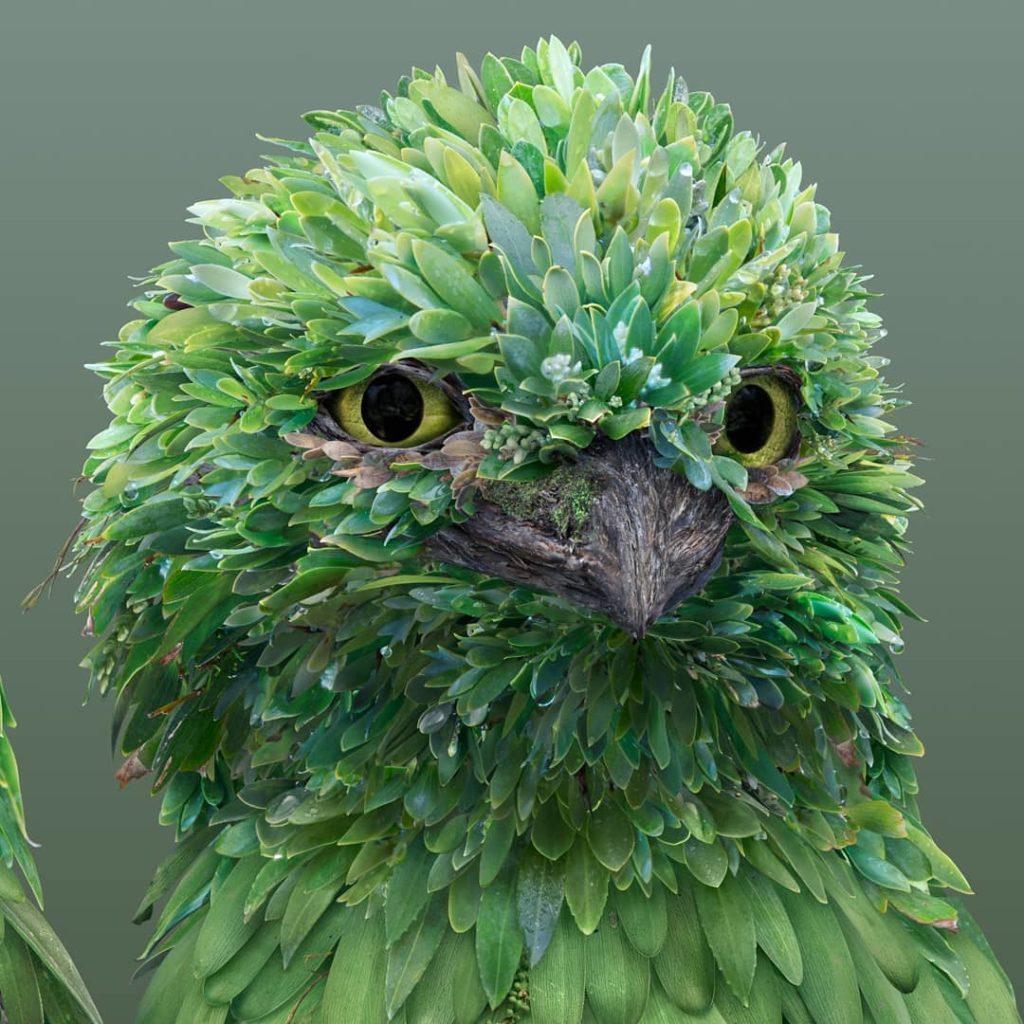 retratos de animales flower petal leaf animals josh dykgraaf 4