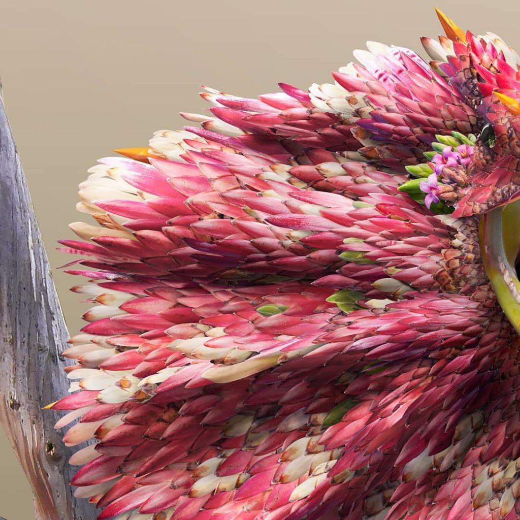 retratos de animales flower petal leaf animals josh dykgraaf 18