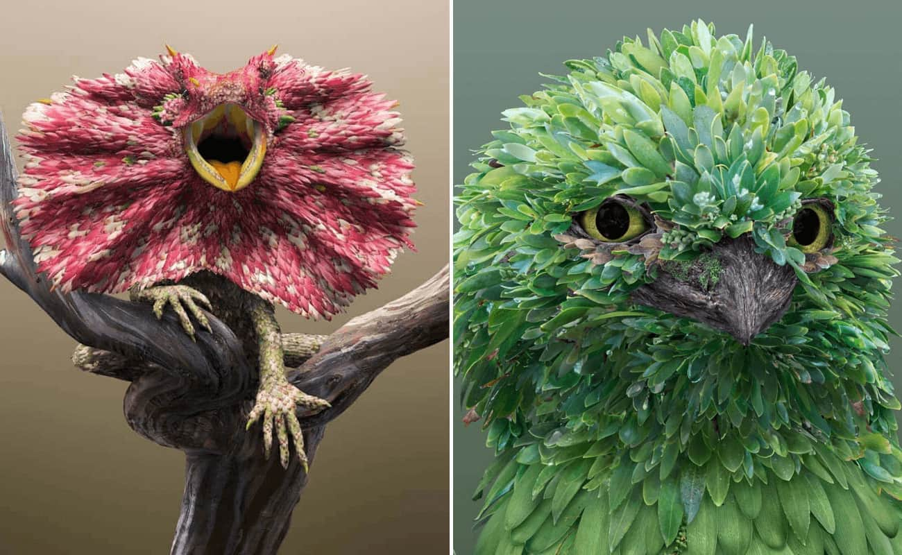 artista ilustrador australiano recrea animales con pétalos y hojas