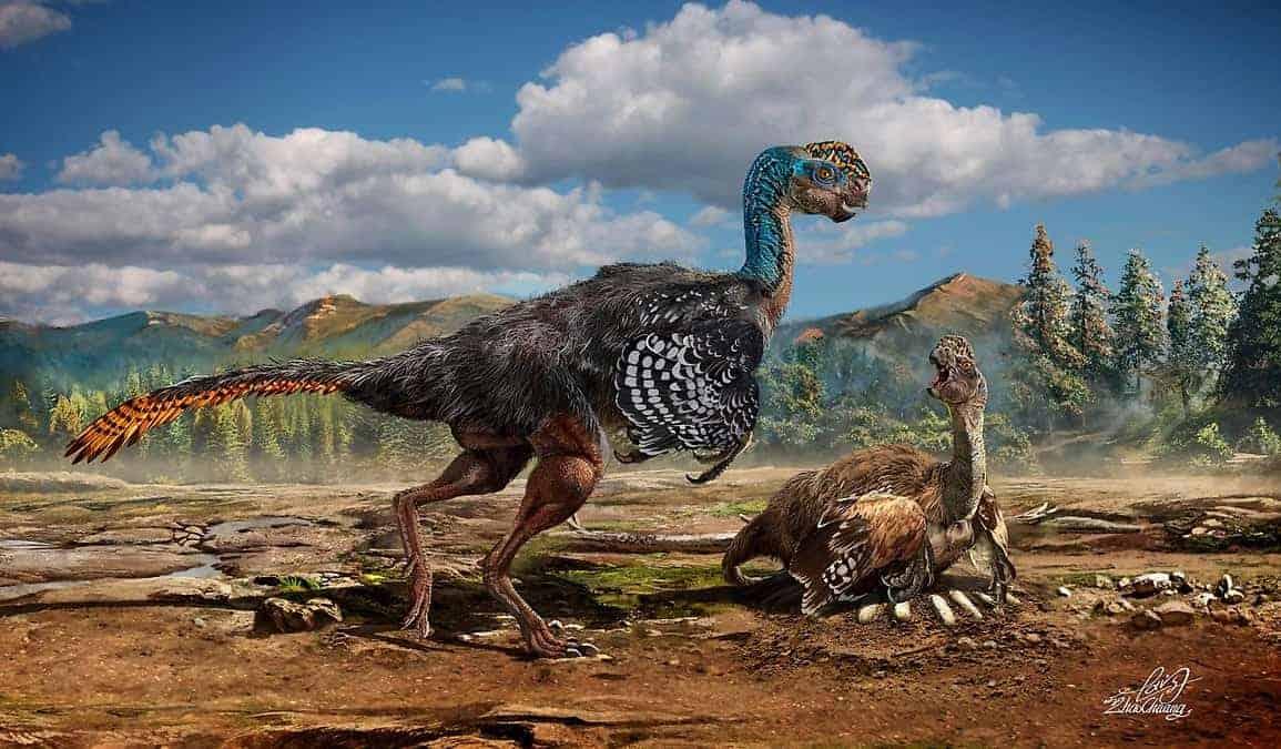 oviraptorosaurio-nido