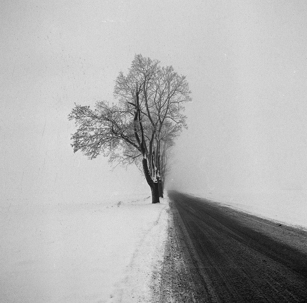 Imagen Black And White Photography Contest Milky Way By Krystian Kozminski