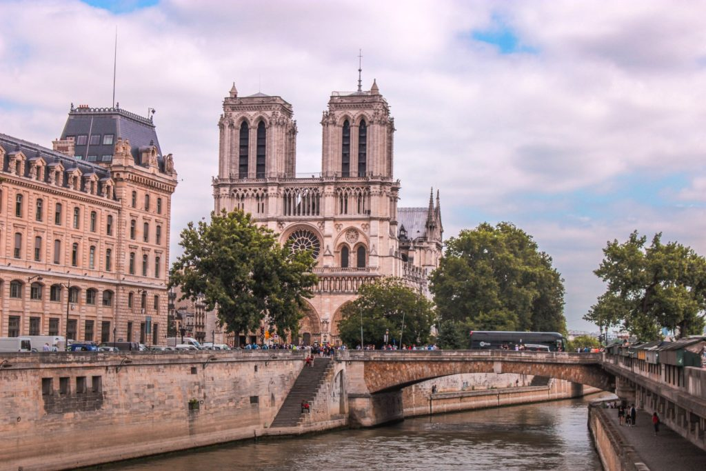 La Reconstrucción De La Catedral De Notre Dame Podría Llevar Hasta 20 Años