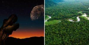 Un nuevo estudio sugiere que el asteroide que causó la extinción de los dinosaurios dio inicio a las selvas tropicales como las conocemos hoy en día