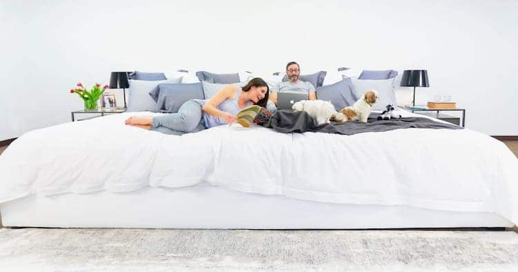 imagen empresa de colchones ace family bed mattress 10