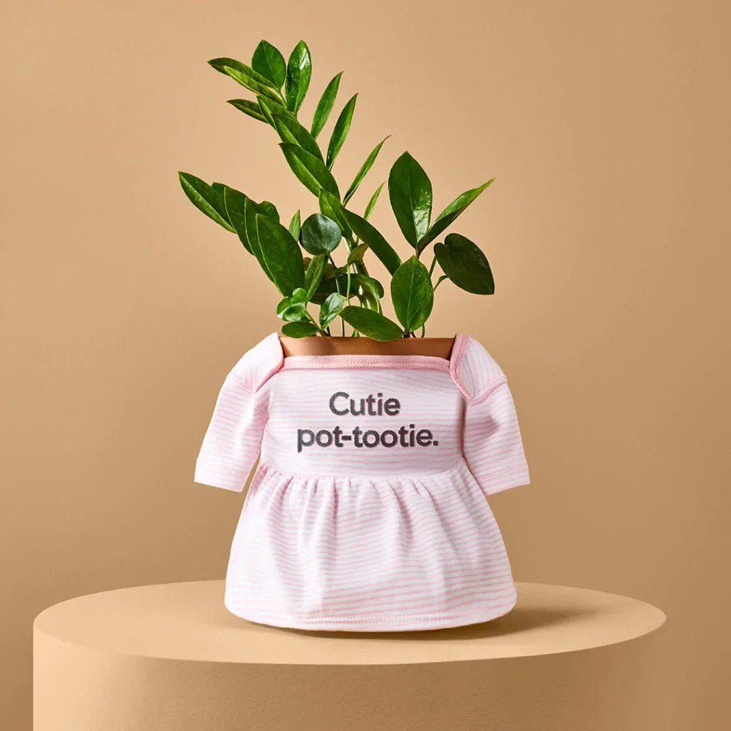 imagen colección de prendas de bebé miraclegro plantparenthood 03