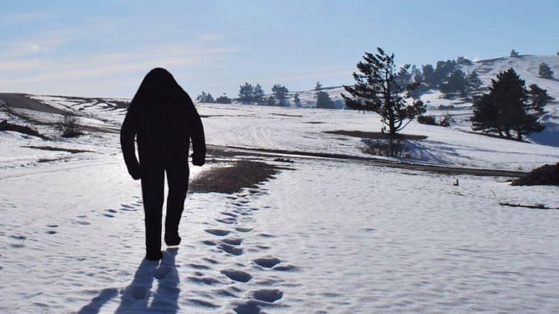 Un político de Rusia admitió que crearon un Yeti falso para atraer turistas a Siberia