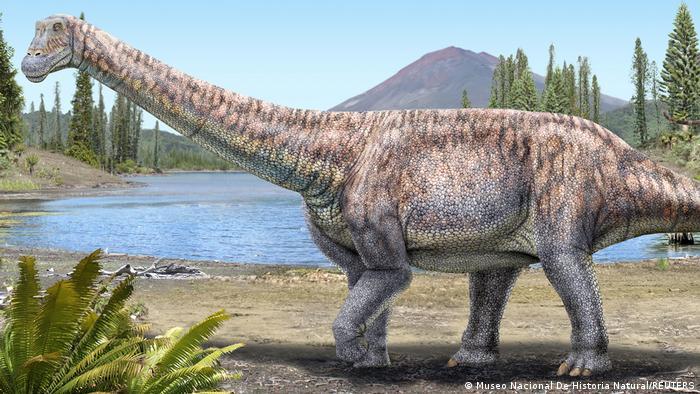 nuevo-dinosaurio-chile