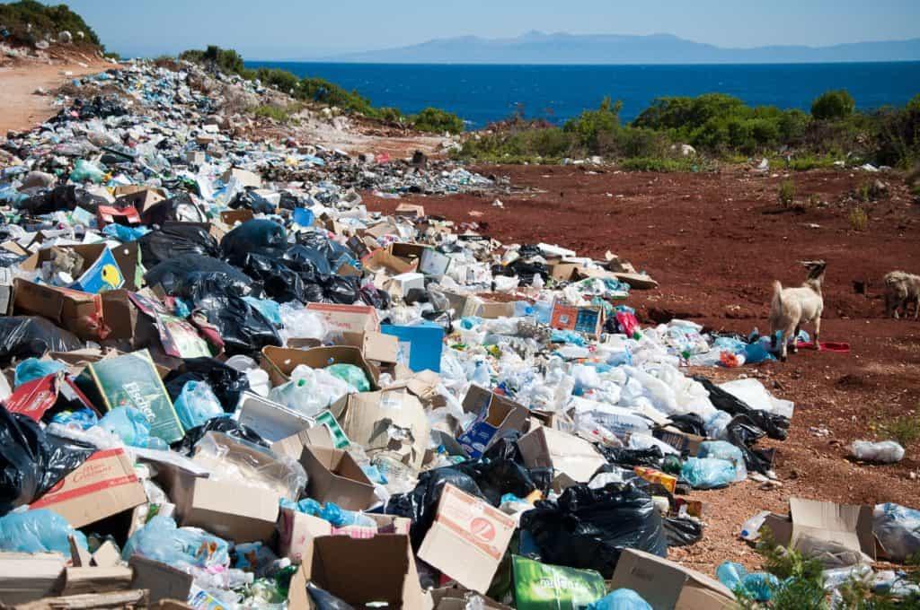 Un estudio revela que solo el 3% de los ecosistemas del planeta Tierra no han sido intervenidos por la actividad de las personas