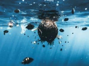 Este sitio web brinda la posibilidad de ayudar a limpiar los océanos desde la comodidad de tu casa