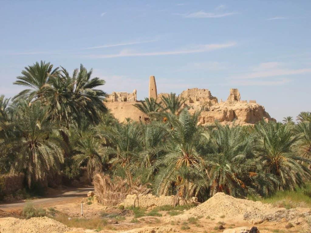 Cómo llegar al Oasis de Siwa, un oasis escondido que tienes que conocer en el desierto del Sahara